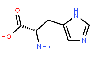 Histidine metabolism