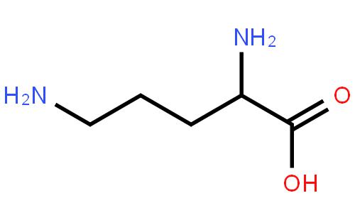 2,5-二氨基戊酸