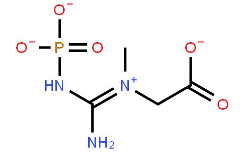 磷酸肌酸钠,四水