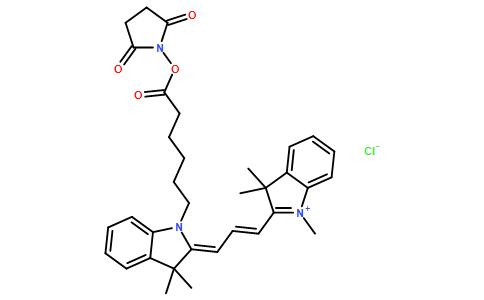 标记生物分子的氨基基团的活性染料