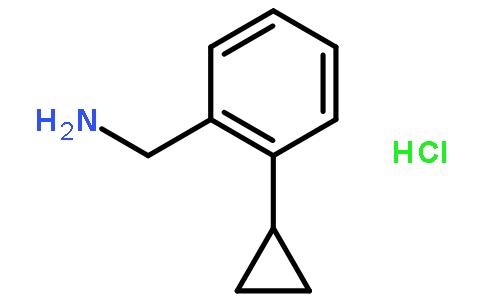 湖北楚盛威化工有限公司 > 2-环丙基苄胺盐酸盐   结构式搜索 cas: 联