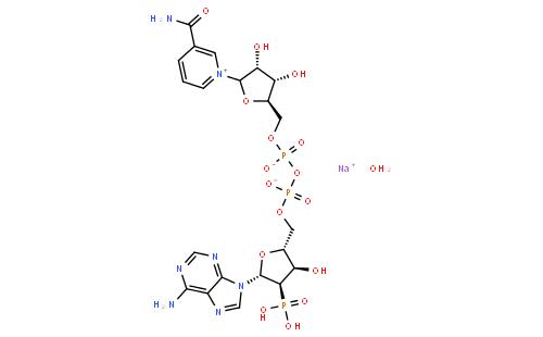β-煙酰胺腺嘌呤二核苷酸磷酸鈉鹽