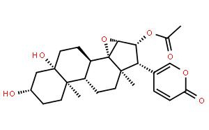 Cinobufotalin