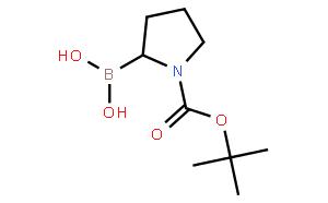 N-叔丁氧羰基吡咯烷-2-硼酸