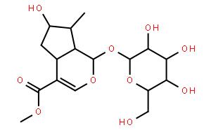 马钱苷(马钱素)