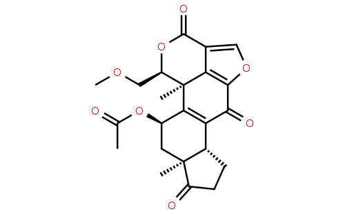 渥曼青霉素