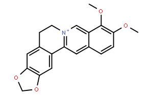 Berberine;小檗碱/黄连素