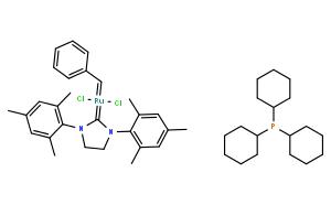 Grubbs 2 代催化劑