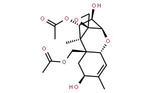 Neosolaniol