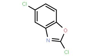 2,5-二氯苯并噁唑