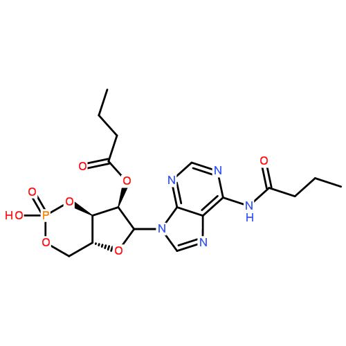 二丁酰环磷腺苷