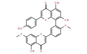 银杏素;银杏黄酮苷;银杏黄素