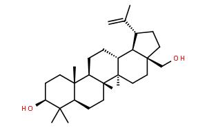 Betulin;白桦脂醇