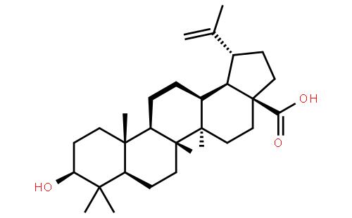 白桦脂酸结构式