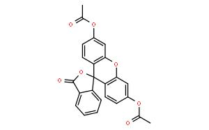 荧光素二乙酸盐