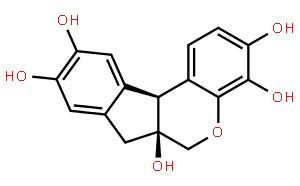 Hematoxylin