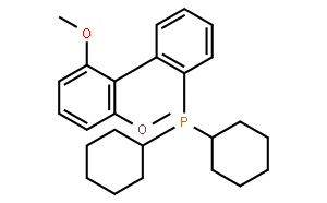 2- 二环己基膦-2',6'-二甲氧基联苯