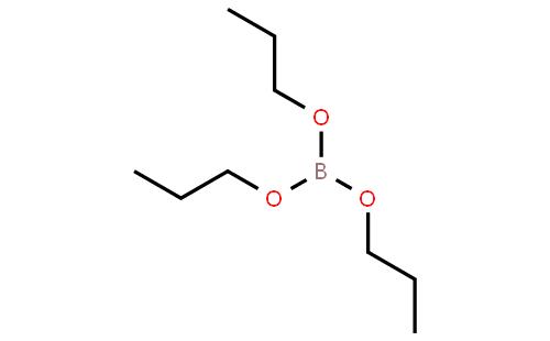 武汉金诺化工有限公司 > 硼酸三丙酯   结构式搜索 cas: 联系人:陈蕾