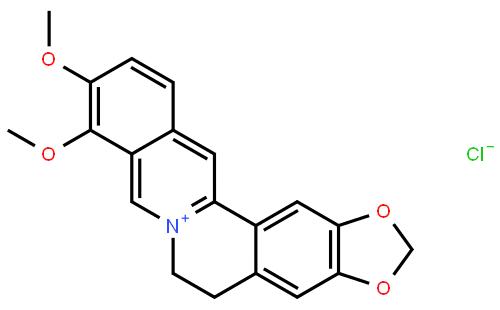 鹽酸黃連素