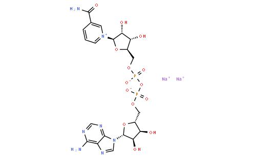 还原型辅酶I二钠盐