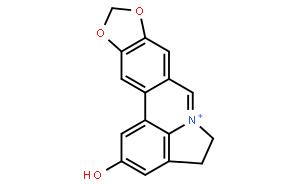 Lycobetaine