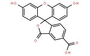 5-羧基荧光素