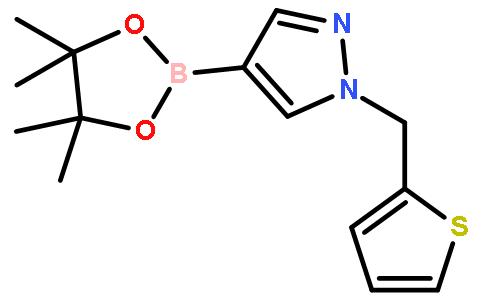 1H-Pyrazole,4-(4,4,5,5-tetramethyl-1,3,2-dioxaborolan-2-yl)-1-(2-thienylmethyl)-