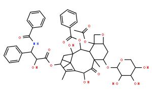 7-xylosyltaxol