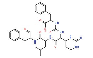 Chymostatin