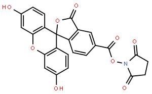 5-羧基荧光素琥珀酰亚胺酯