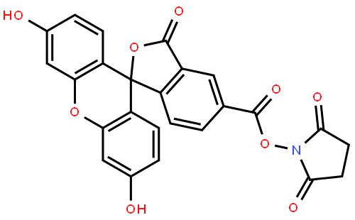 5-羧基熒光素琥珀酰亞胺酯