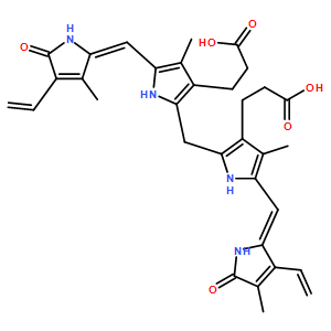 Bilirubin;胆红素