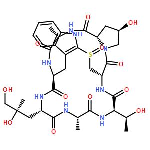 鬼笔环肽Phalloidin