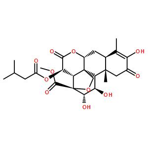 鸦胆子素 A